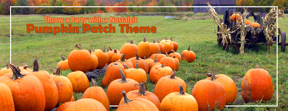 Pumpkin Patch Party Theme